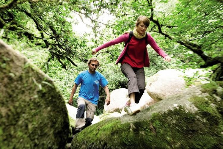 Nature en Bretagne